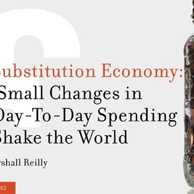 The Substitution Economy: How Small Changes in Our Day-To-Day Spending Can Shake the World.