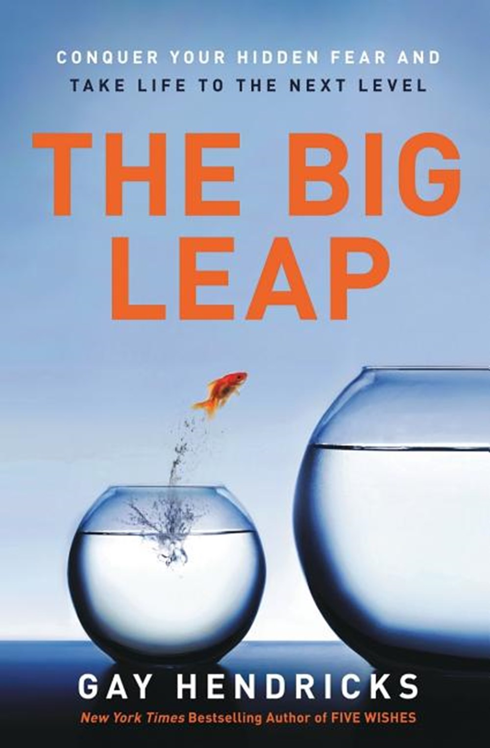 Big Leap Conquer Your Hidden Fear and Take Life to the Next Level
