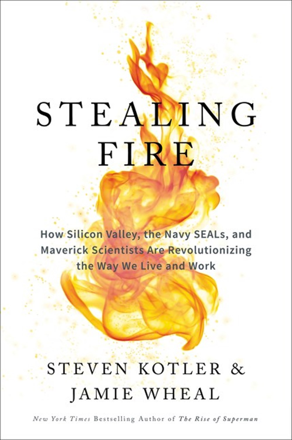Stealing Fire How Silicon Valley, the Navy SEALs, and Maverick Scientists Are Revolutionizing the Wa