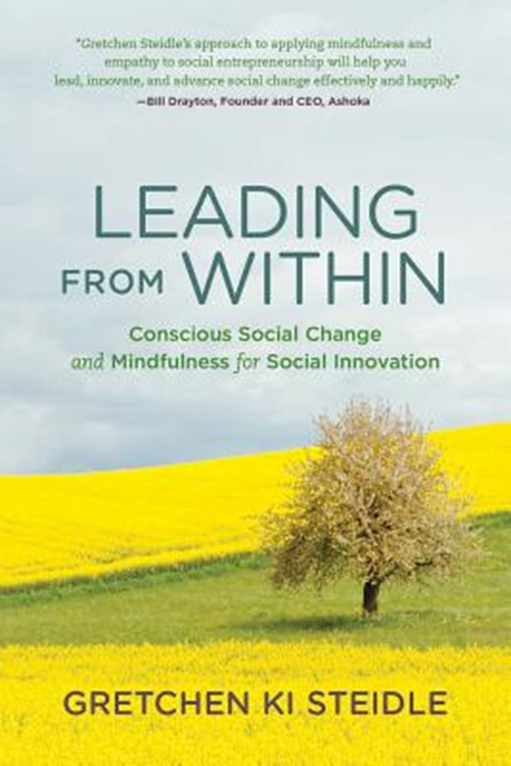 Leading from Within Conscious Social Change and Mindfulness for Social Innovation