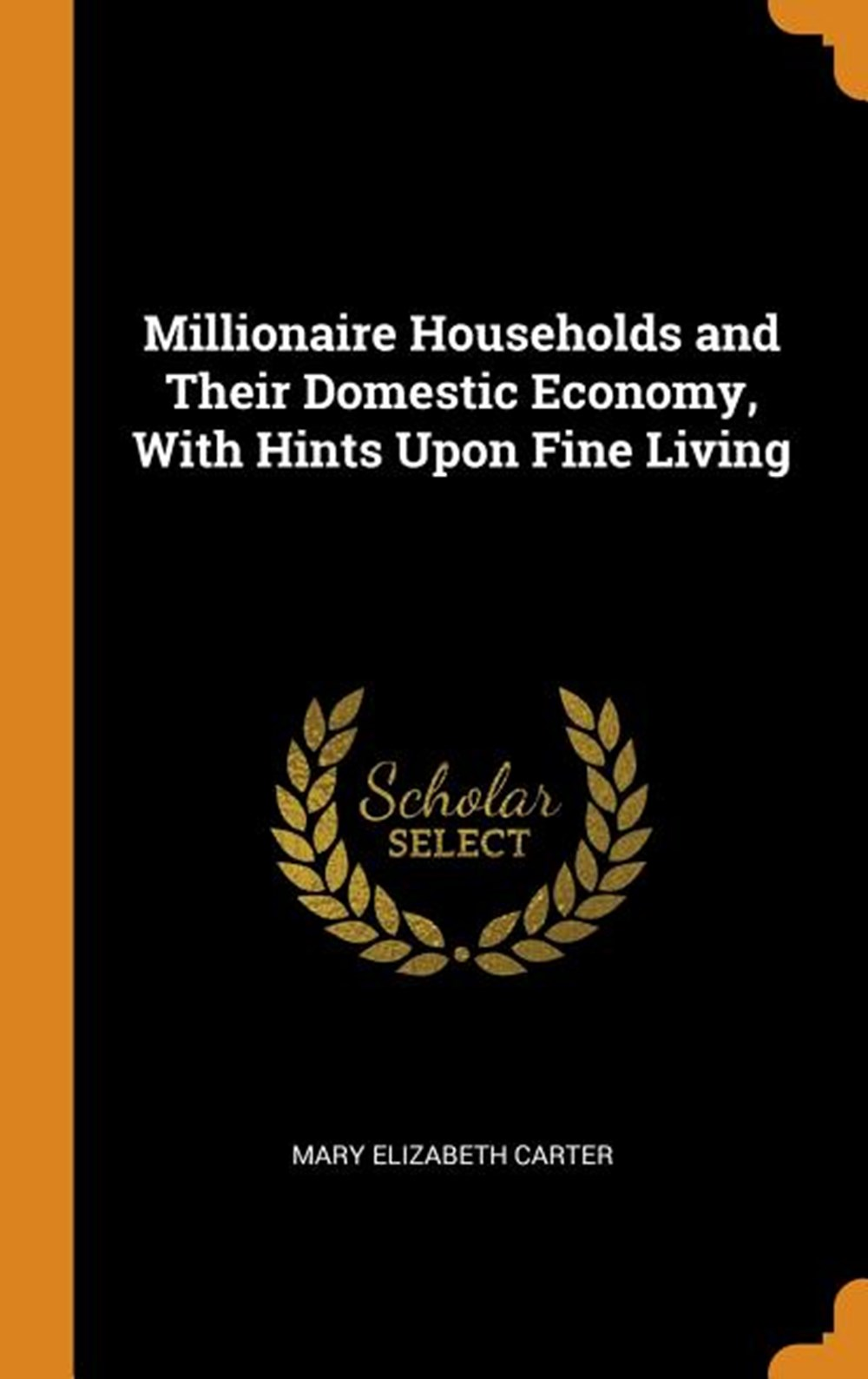 Millionaire Households and Their Domestic Economy, with Hints Upon Fine Living