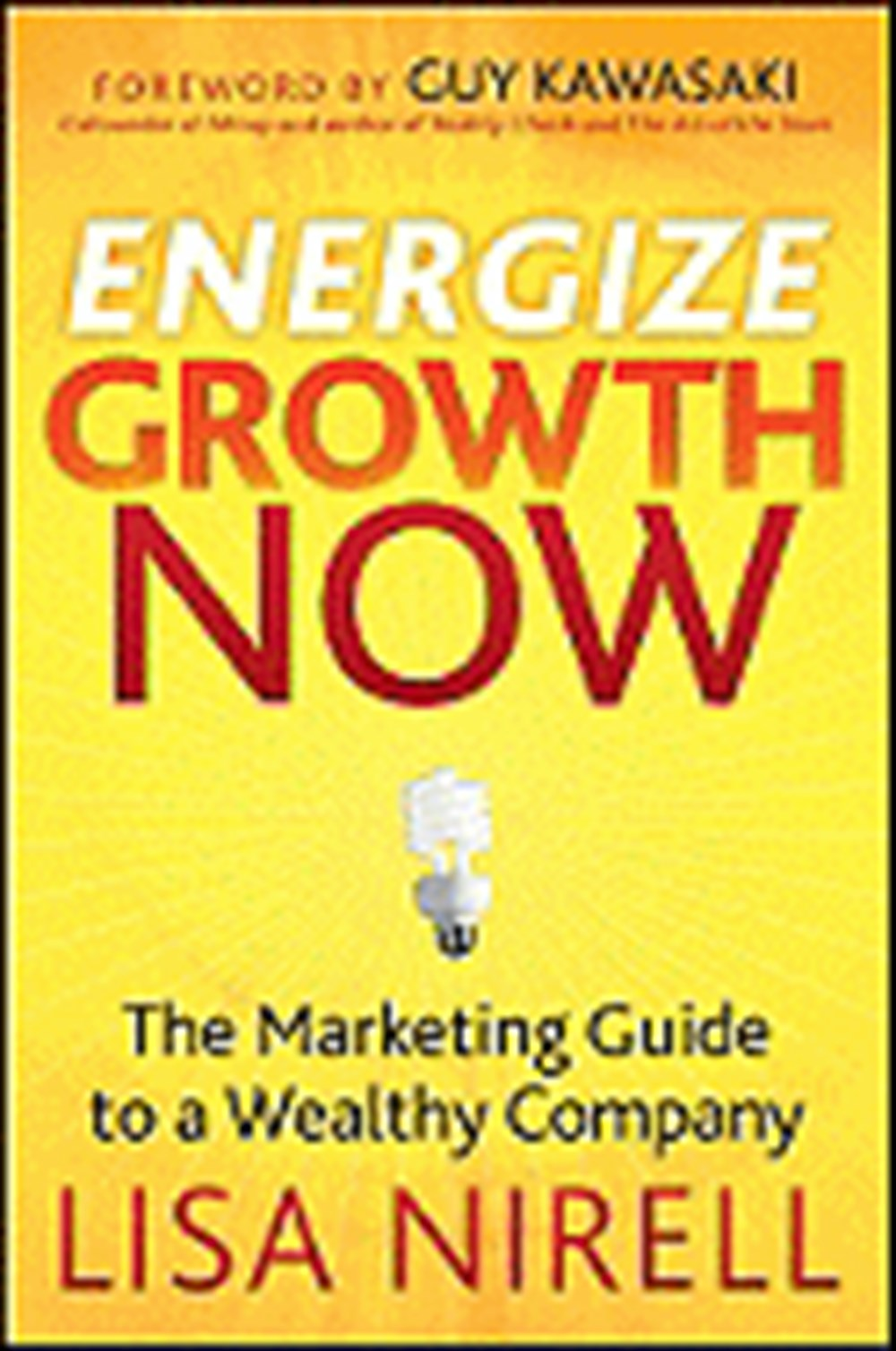 Energize Growth Now The Marketing Guide to a Wealthy Company