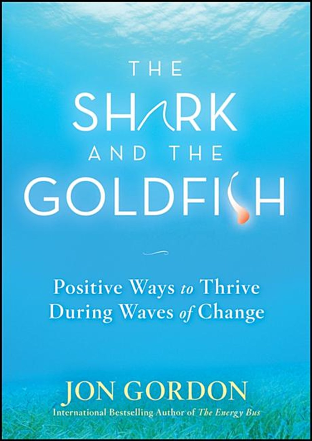 Shark and the Goldfish Positive Ways to Thrive During Waves of Change