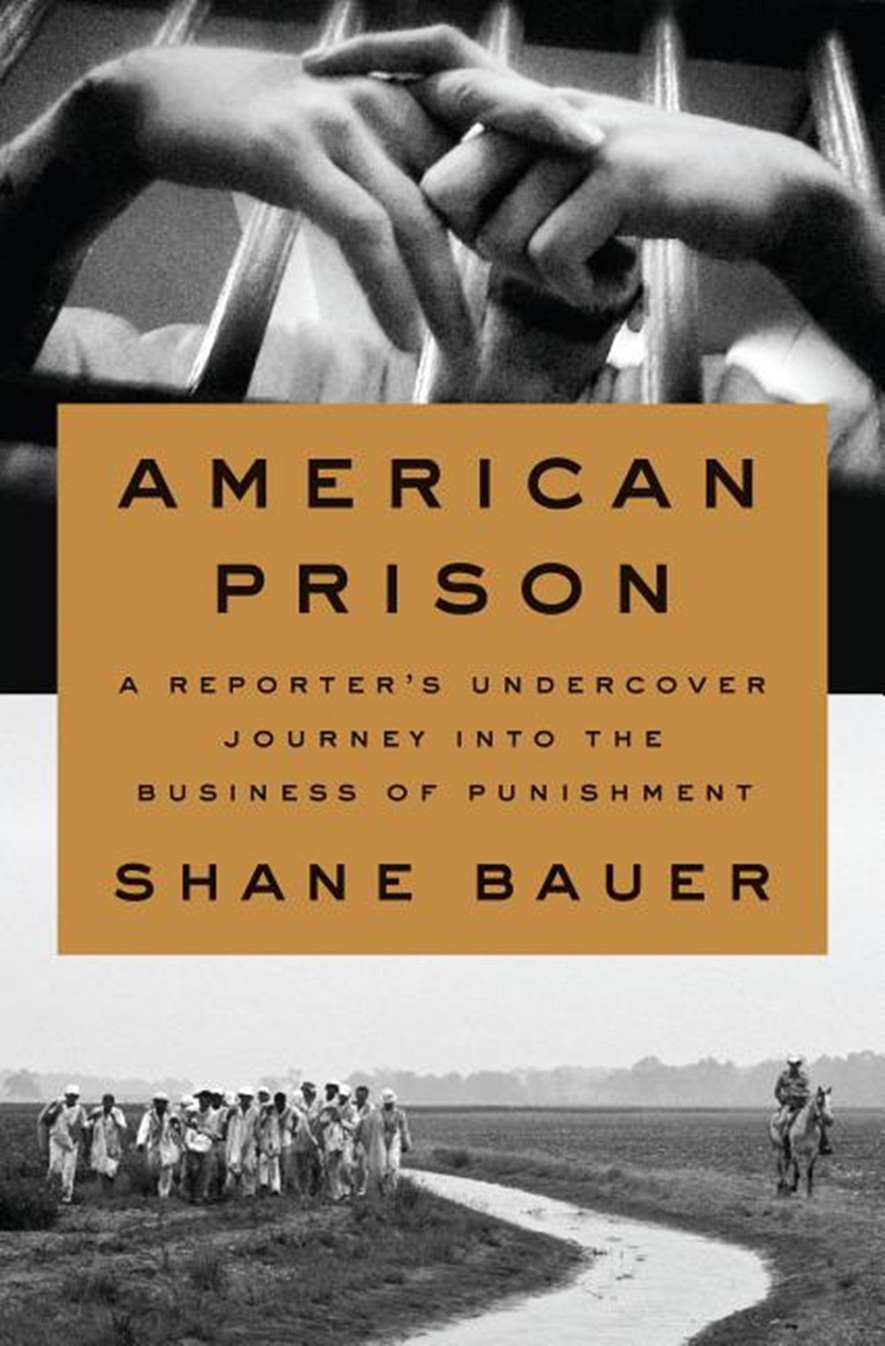 American Prison A Reporter's Undercover Journey Into the Business of Punishment