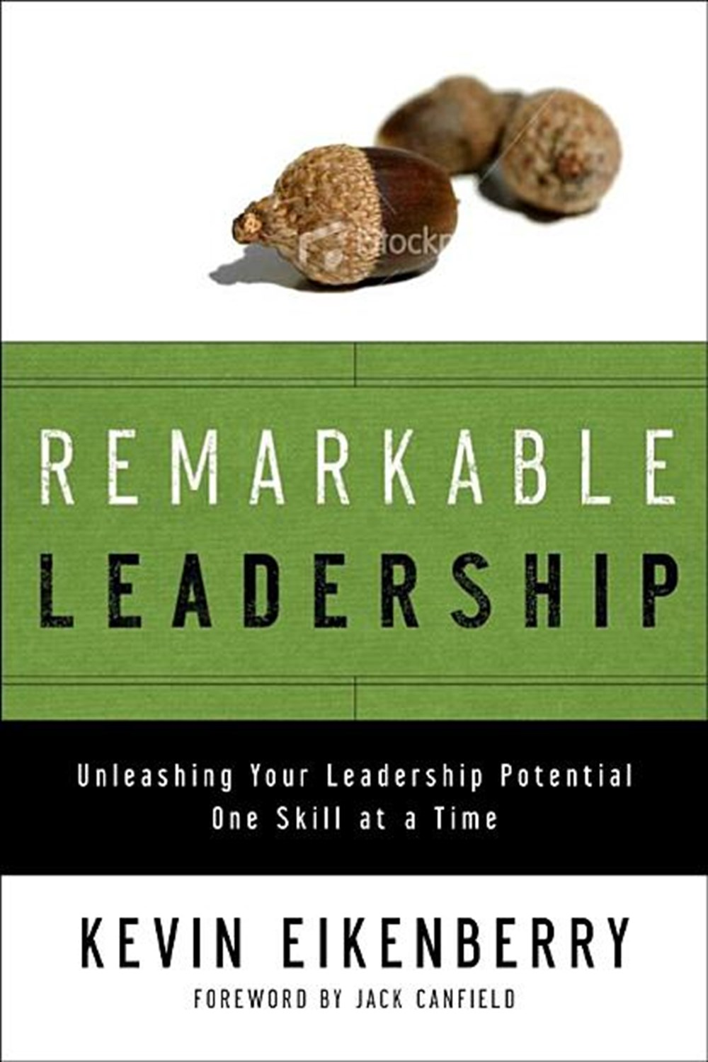 Remarkable Leadership Unleashing Your Leadership Potential One Skill at a Time