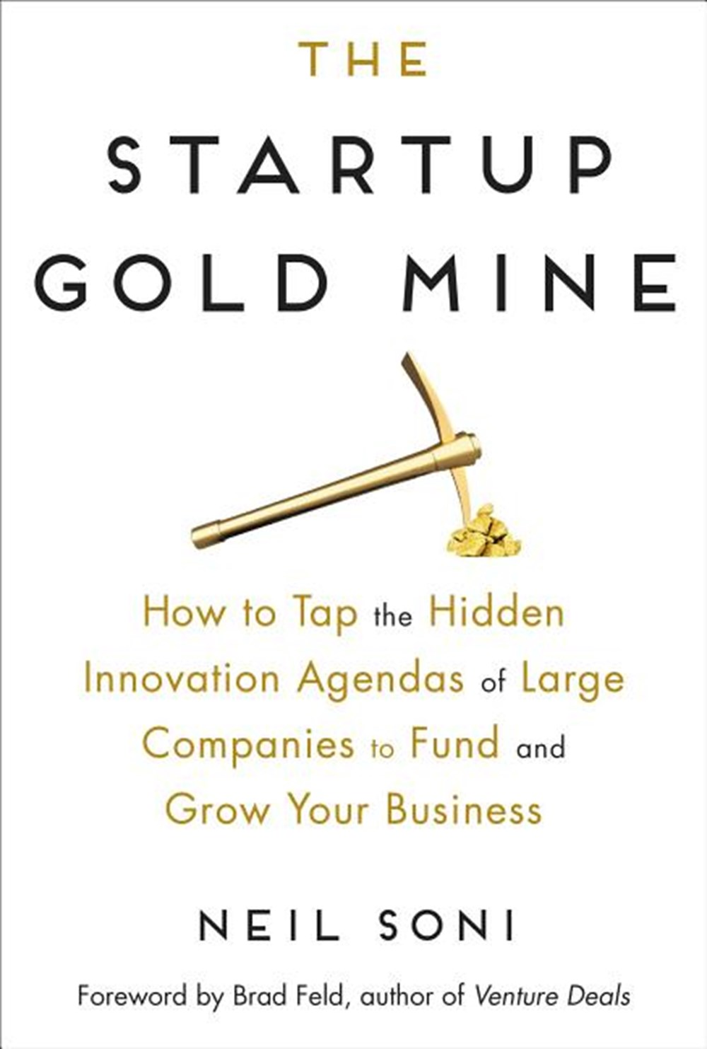 Startup Gold Mine How to Tap the Hidden Innovation Agendas of Large Companies to Fund and Grow Your