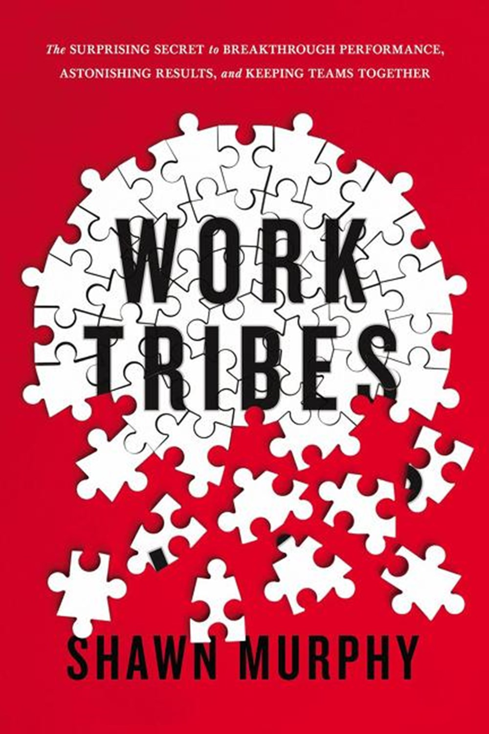 Work Tribes The Surprising Secret to Breakthrough Performance, Astonishing Results, and Keeping Team
