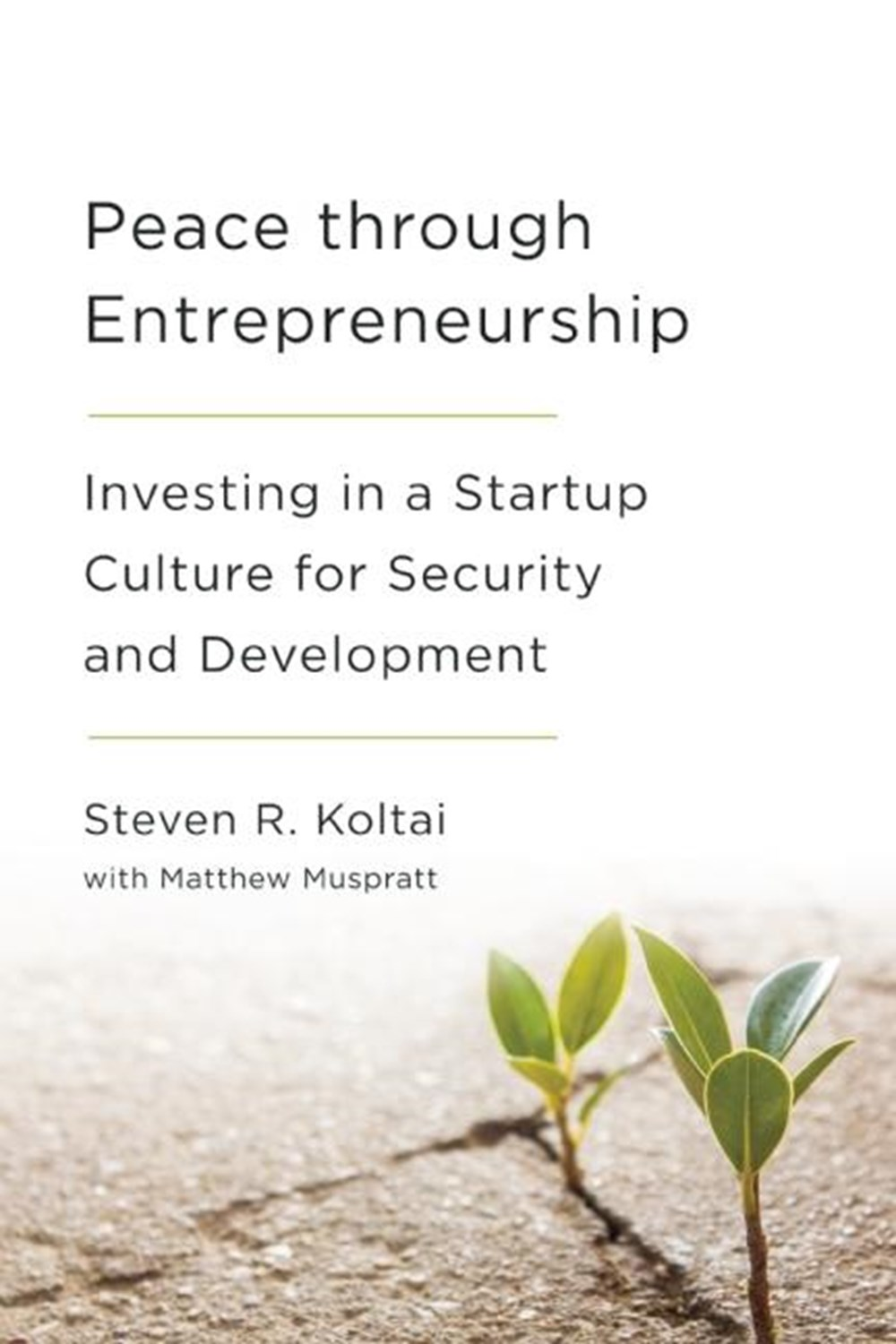 Peace Through Entrepreneurship: Investing in a Startup Culture for Security and Development