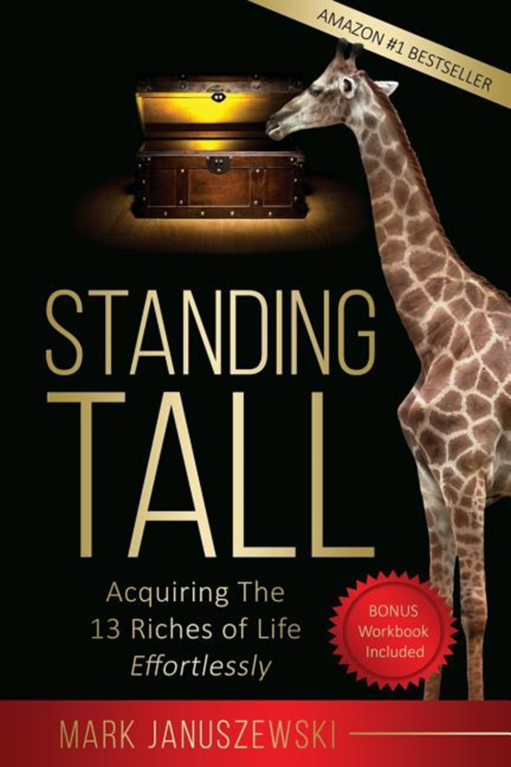Standing Tall Acquiring the 13 Riches of Life Effortlessly