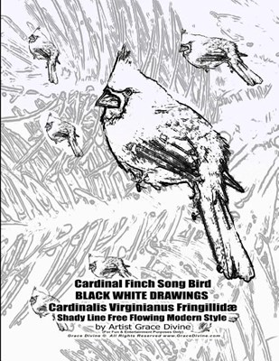 Cardinal Finch Song Bird BLACK WHITE DRAWINGS Cardinalis Virginianus Fringillid� Shady Line Free Flowing Modern Style by Artist Grace Divine