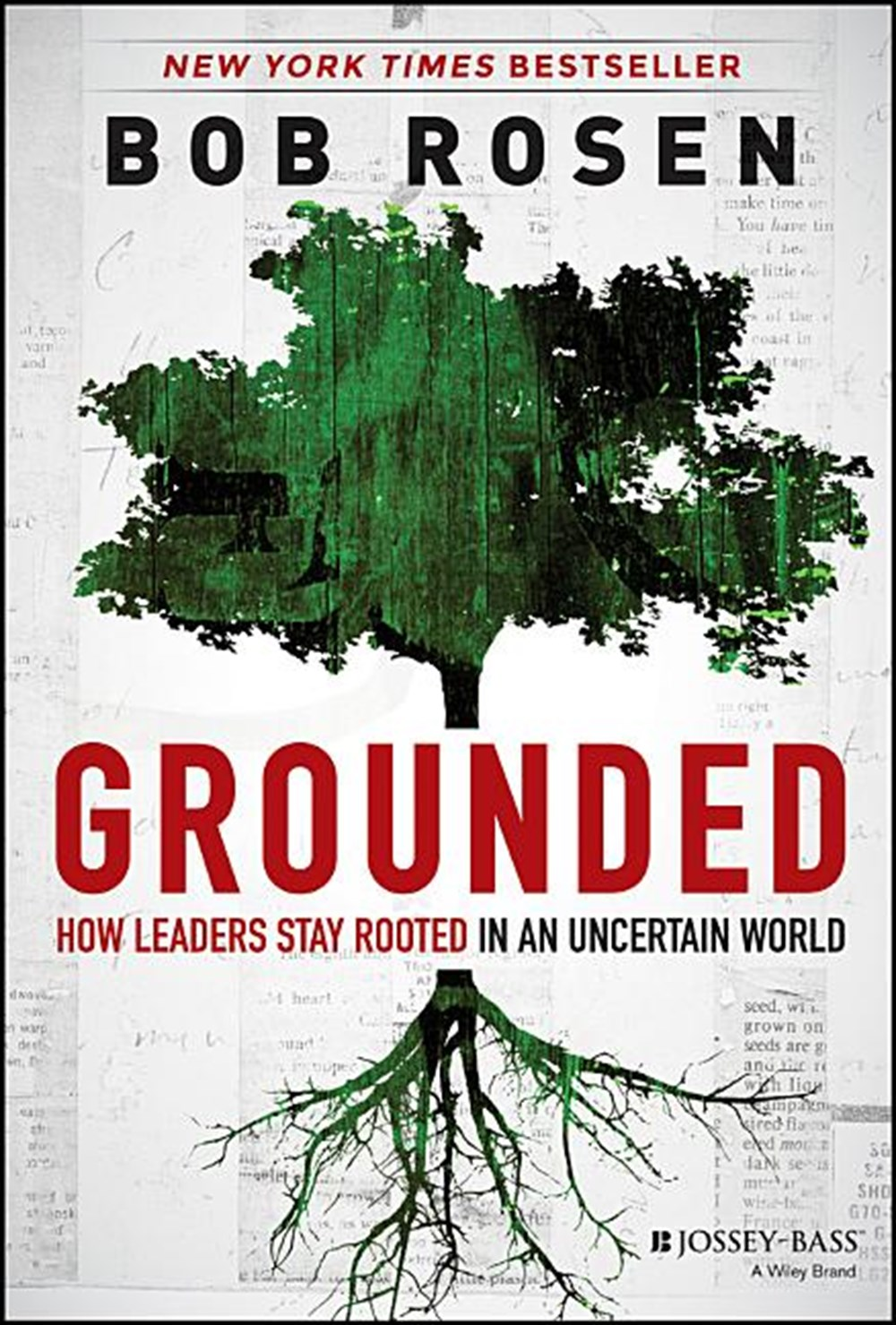 Grounded How Leaders Stay Rooted in an Uncertain World