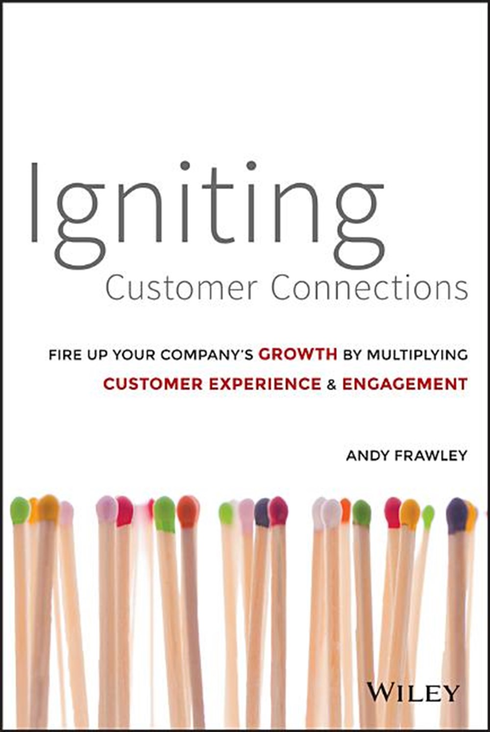 Igniting Customer Connections Fire Up Your Company's Growth by Multiplying Customer Experience and E
