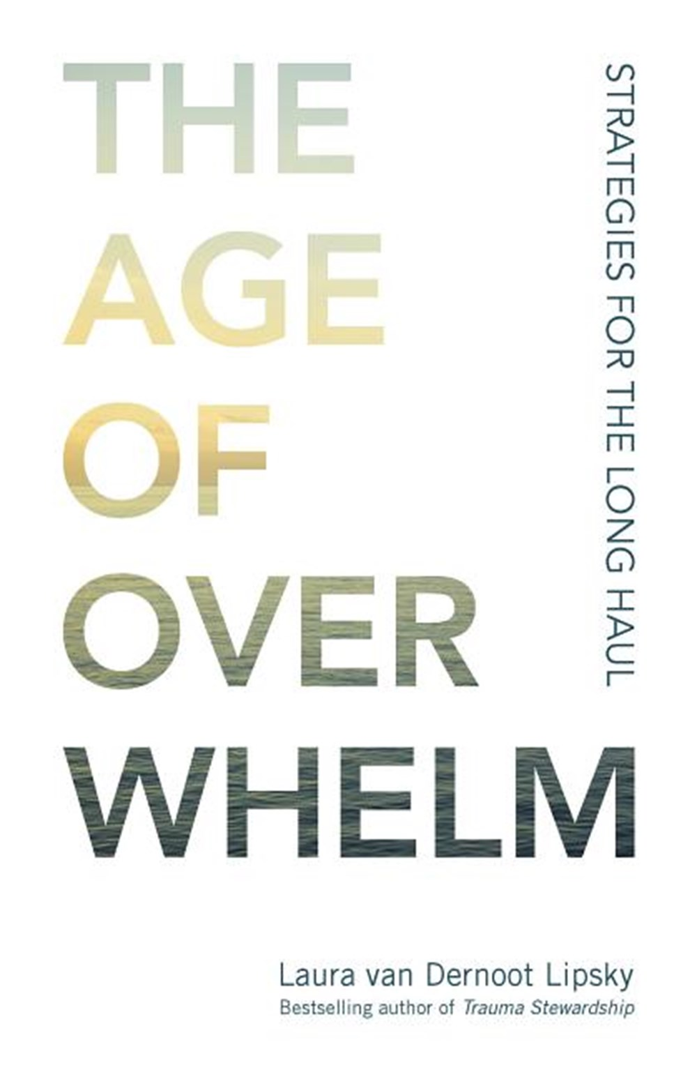 Age of Overwhelm Strategies for the Long Haul