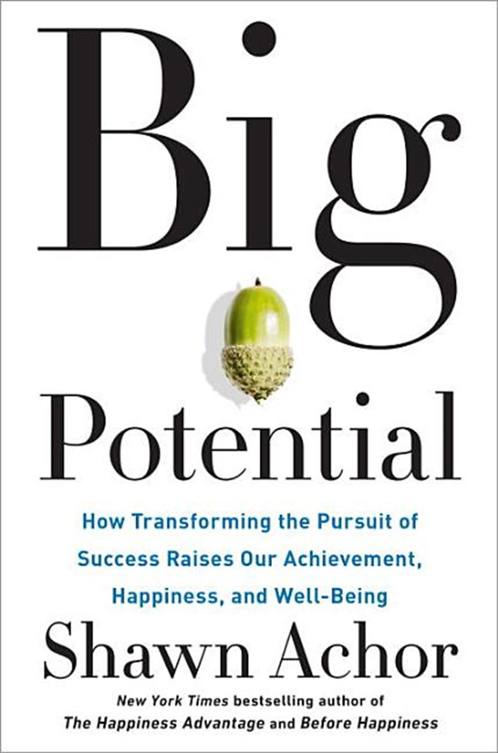 Big Potential How Transforming the Pursuit of Success Raises Our Achievement, Happiness, and Well-Be