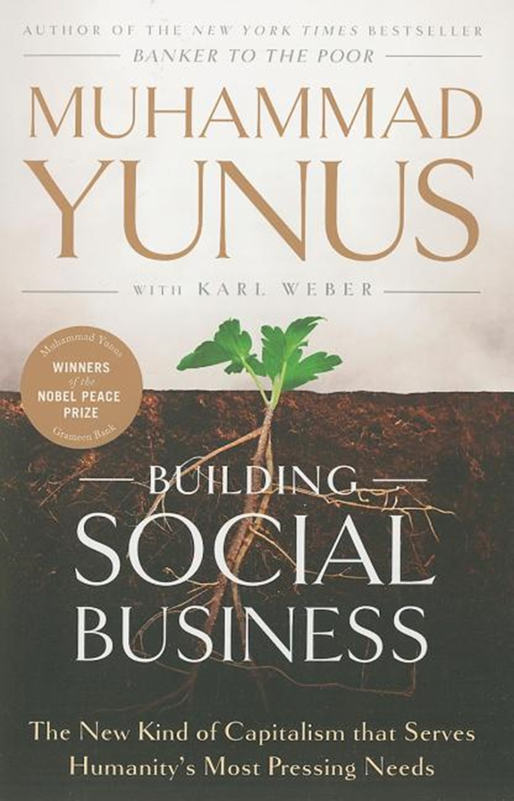 Building Social Business The New Kind of Capitalism That Serves Humanity's Most Pressing Needs