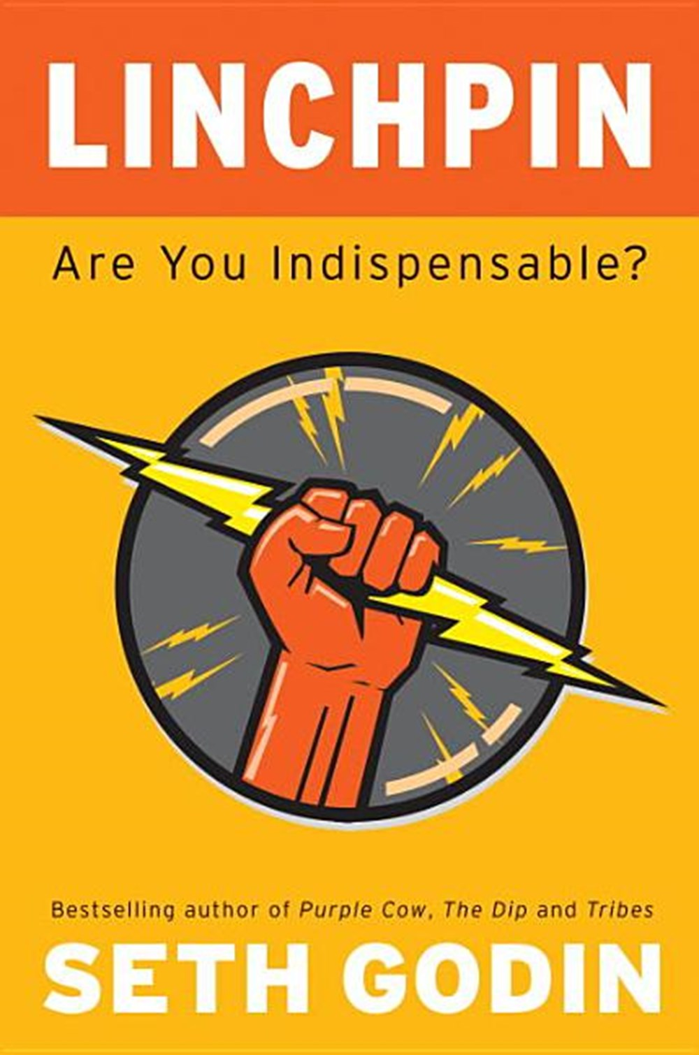 Linchpin Are You Indispensable?