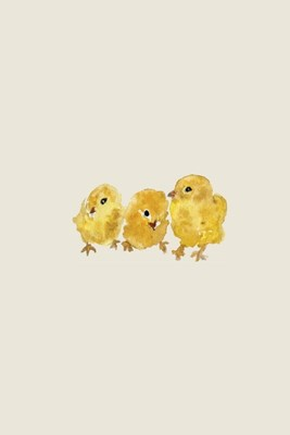 Three Baby Chicks - A Poetose Notebook (50 pages/25 sheets)