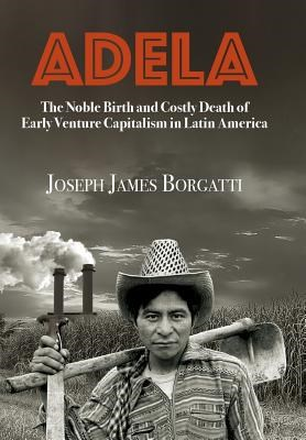 Adela: The Noble Birth and Costly Death of Early Venture Capitalism in Latin America