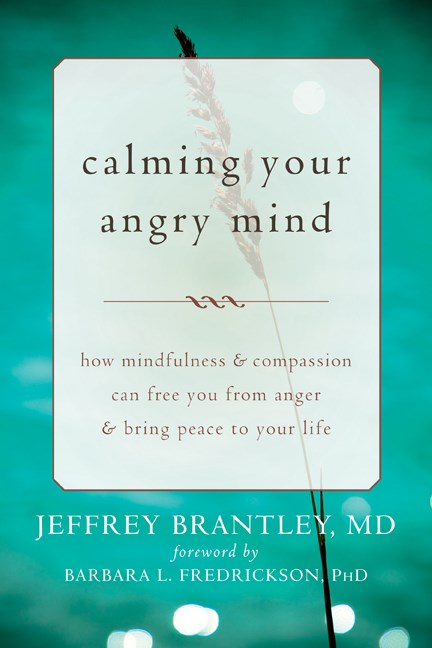 Calming Your Angry Mind: How Mindfulness & Compassion Can Free You from Anger & Bring Peace to Your Life